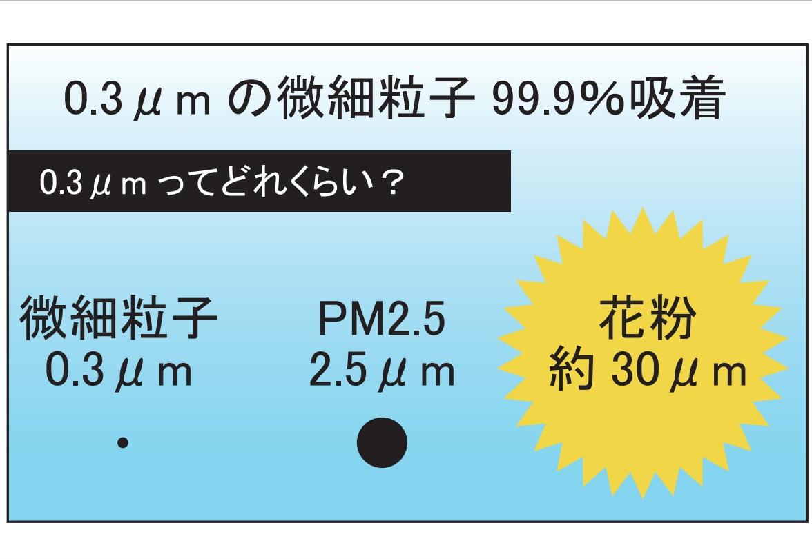 0.3μmの微細粒子